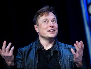 Elon Musk anuncia 'sucesso' de experiência com chip implantado em cérebro de macaco e é acusado de tortura pela Peta