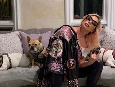 Sequestro dos cachorros de Lady Gaga pode ter sido parte de ritual de iniciação para gangue