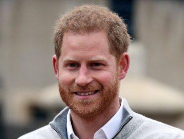 Trabalhadores reais: além de Harry, veja outros 5 membros da família real britânica que pegam no batente