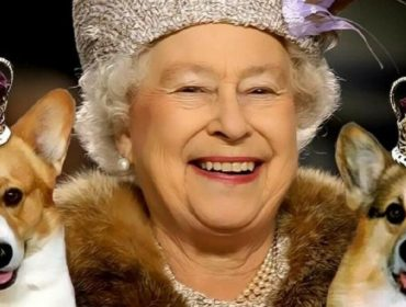 A rainha cria cachorros da raça desde a adolescência