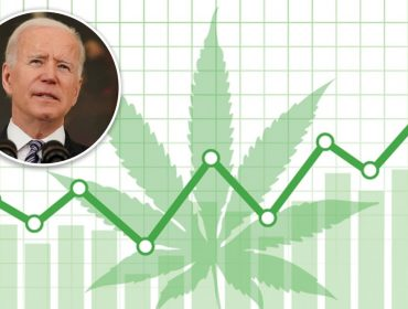 Com Joe Biden na presidência dos EUA, empresas relacionadas à maconha voltam a viver dias de glória