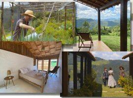 Episódio desta sexta de LAR_Vida Interior, no GNT, mostra o lar 'orgânico' de Lucia Koranyi, Dani Cury e José Camarano. Aos detalhes!