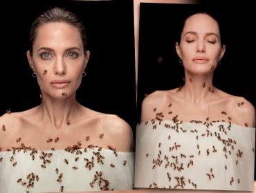 No Dia Mundial das Abelhas, Angelina Jolie é clicada coberta pelos insetos para promover programa de preservação da espécie