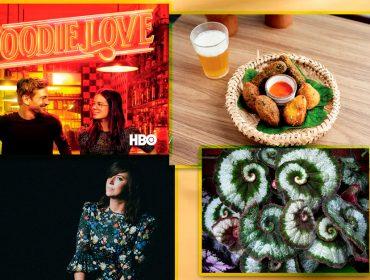 Maio é mês bom para… Revista J.P lista o que fazer para deixar os seus dias mais inspiradores e interessantes