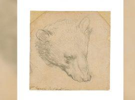 Esboço de urso de apenas 20 centímetros assinado por Da Vinci vai a leilão e deve ser arrematado por mais de R$ 65 milhões