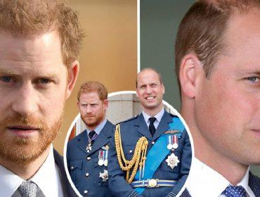 Pesquisa indica que 'batalha dos irmãos' entre Harry e William está sendo vencida pelo futuro rei