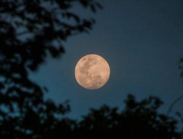 Água da lua: tudo o que você precisa saber sobre o ritual de bem-estar queridinho do momento. Aproveite a lua cheia!
