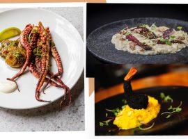 Iguatemi São Paulo promove 1ª edição do Taste the Music que reúne música e gastronomia