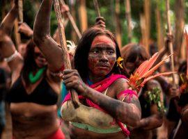 """Com curadoria de Marcello Dantas, exposição """"Devolvo Ouro"""" com fotos de Gabriel Chaim mostra a situação atual dos Yanomamis"""