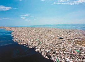 #JulhoSemPlástico: cinco atitudes para aderir e desfrutar uma vida 'plastic free'