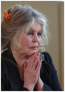 Defensora dos animais sempre: Brigitte Bardot