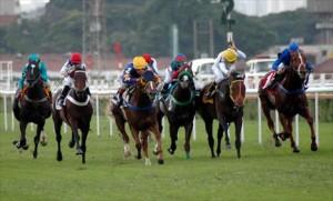 XXV Gran Prêmio Asociación Latino Americana de Jockey Clubes em São Paulo