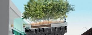 Tudo sobre o High Line, novo parque de Nova York, no Minas de Ouro
