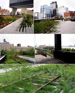 Nova York ganha novo Parque