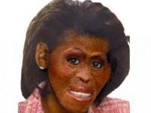Busca por foto de Michelle Obama no Google cria polêmica.