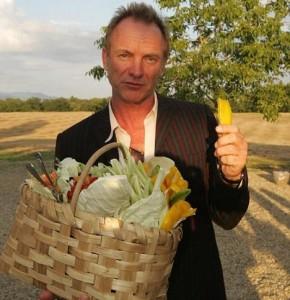 O cantor Sting está explorando novos negócios…