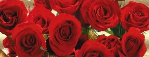 Eike Batista manda flores para Elle Macpherson.