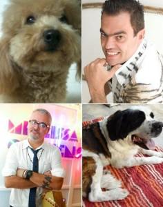 Os top cabeleireiros Marco Antonio de Biaggi e Mauro Freire nos contaram como cuidam dos looks dos seus cães