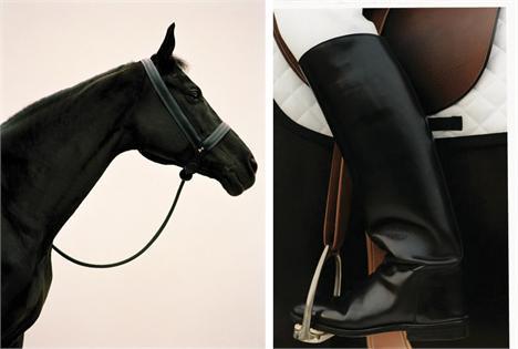 """cc0c6945eda Copa Hermès de Hipismo traz exposição """"Horse by Koto Bolofo"""" ao ..."""